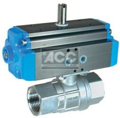 Stainless Steel 1/4 - 2 BSP Double Acting